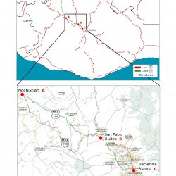 mapa1_-_oaxaca